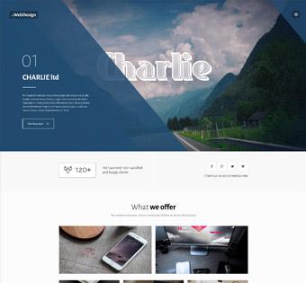 wordpress theme for web designs